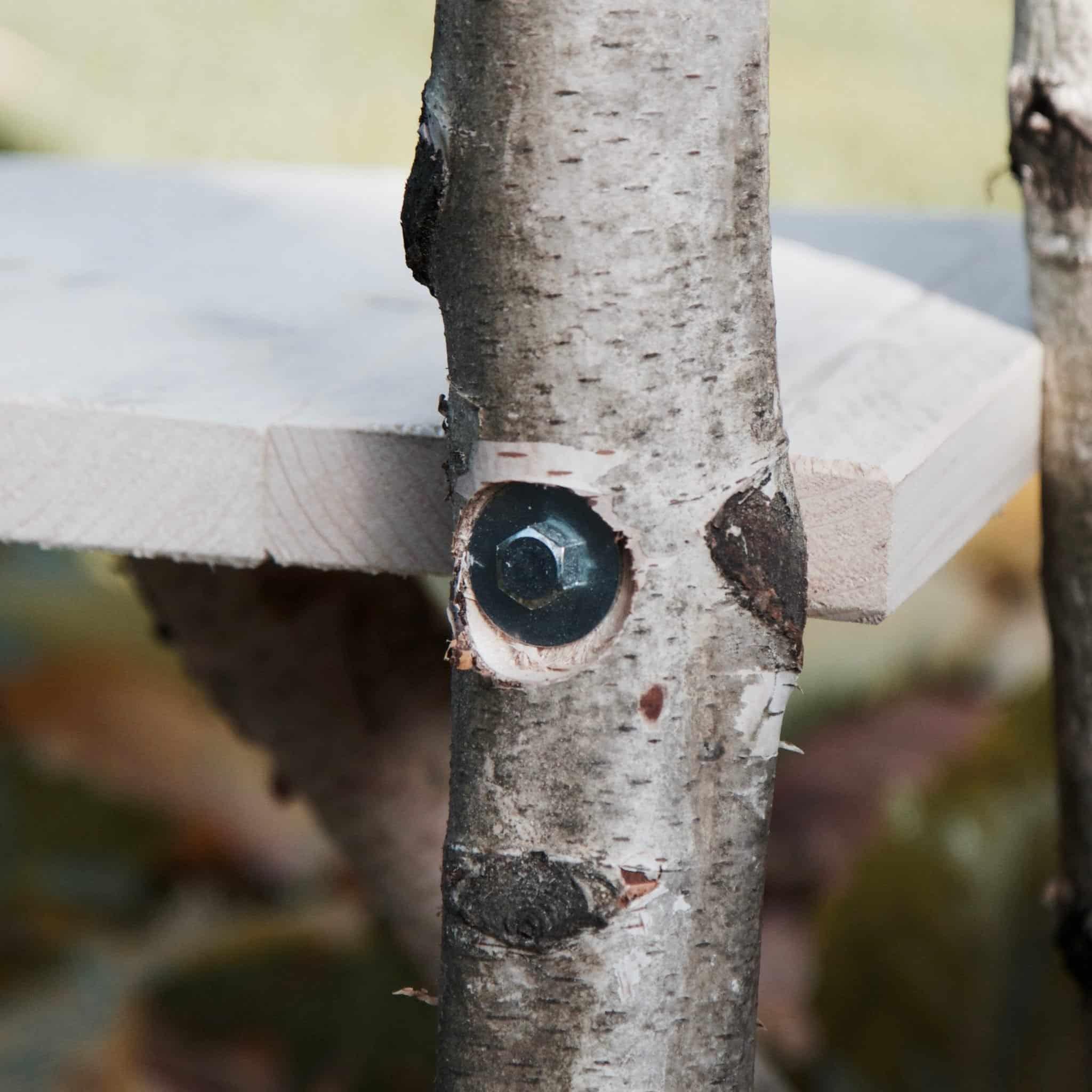 Detail kwaliteit van krabpalenvanhout.nl